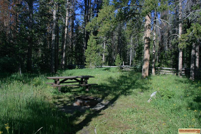 This is a view of site 3 in Trap Creek Campground.