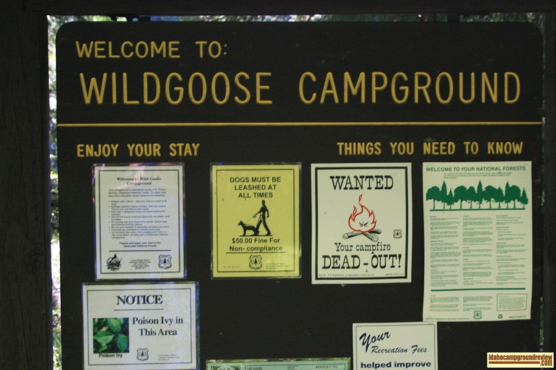 Wild Goose Campground or the Middle Fork of the Clearwater River