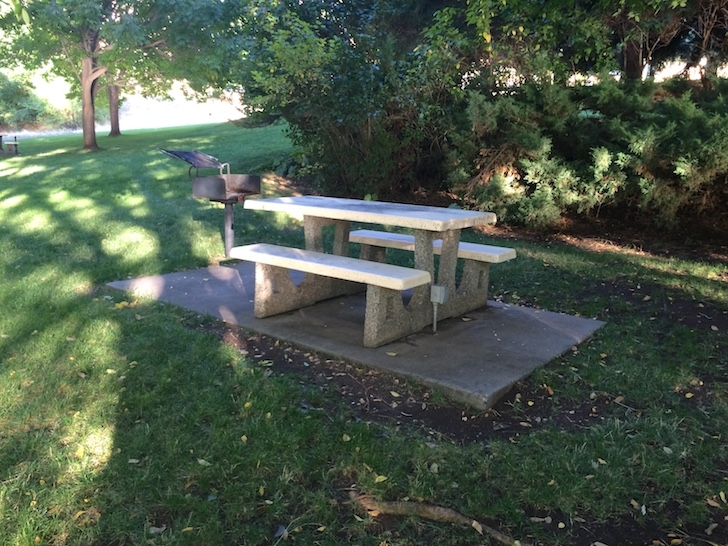 A picture of a picnic site in the day use area of Woodhead Park. Notice the barbecue stand and power outlet.