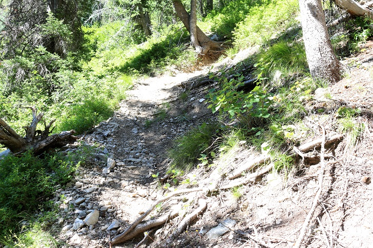 The trail up on the north side of Bridal Veil Falls.