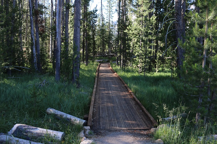 This is a picture of the trail from Stanley Lake Trailhead to where it connects to the Idaho Centennial Trail on Stanley Lake Creek.