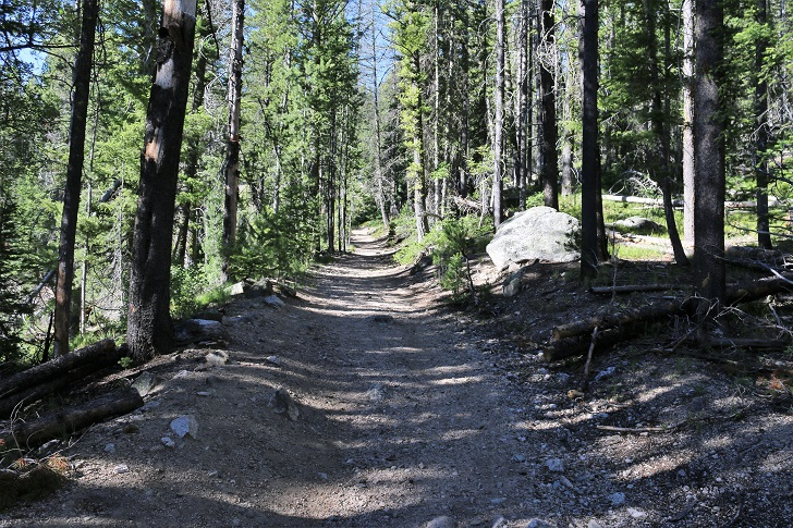 A picture of the Idaho Centennial Trail along Stanley Lake Creek near Lady Face Falls.