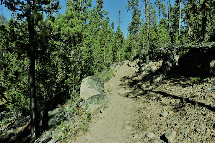 A picture of trail 97 to Hell Roaring Lake.