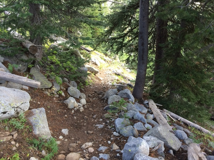 A picture of the trail to Hidden Lake.