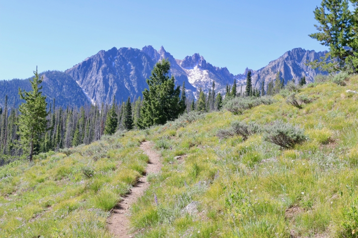 A picture of a view from the Alpine Way trail.