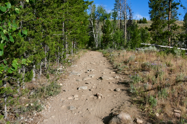 A picture of the first segment of the trail going from Redfish Trailhead.