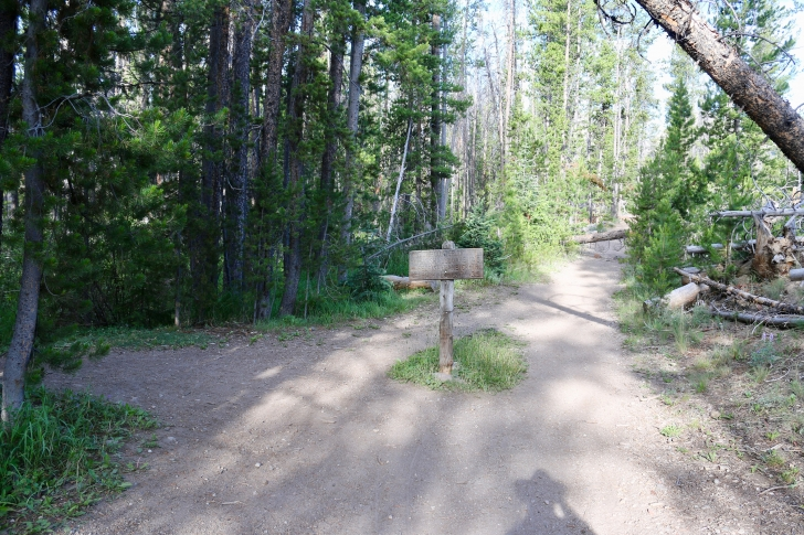 A picture of the junction in the trail turn left to Bench Lakes and straight ahead for Marshall Lake and Fishhook Trail.